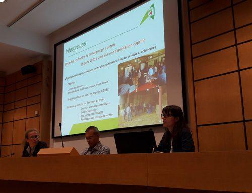 Séminaire d'échange : stratégie d'alimentation et démarches alimentaire en AOP laitière